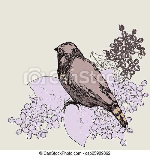 Spring background with bird and a lilac, hand-drawing. Vector il - csp25909862
