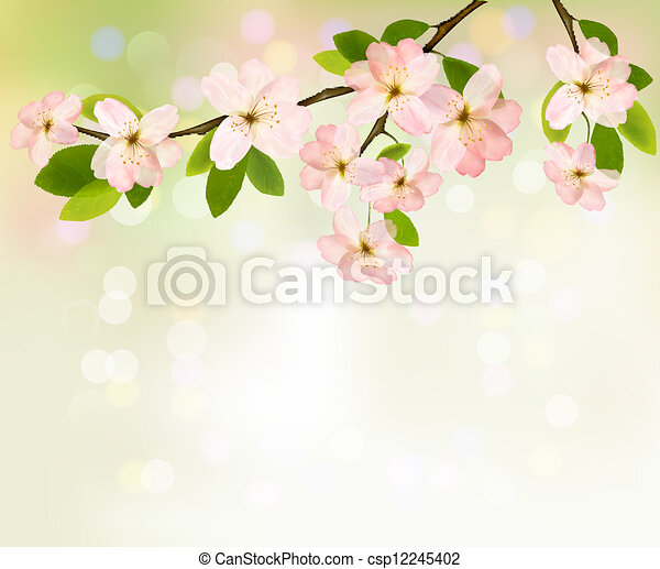 Spring background with blossoming tree brunch with spring flowers. Vector illustration. - csp12245402