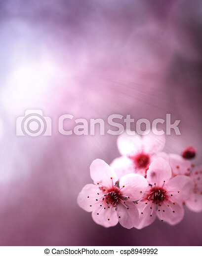 Spring background with flowers and pink colors - csp8949992