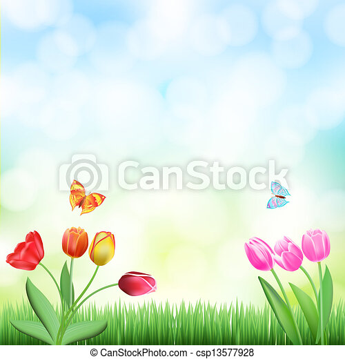 spring background with grass, tulips and butterflies - csp13577928