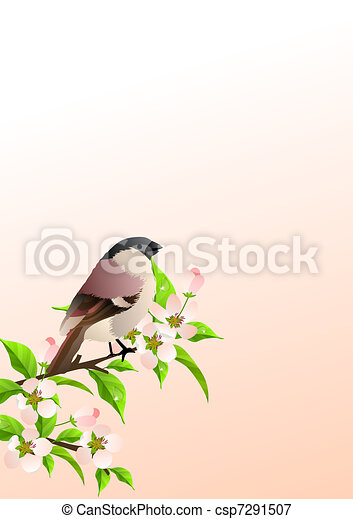 Spring background with sparrow at lilac branch - csp7291507