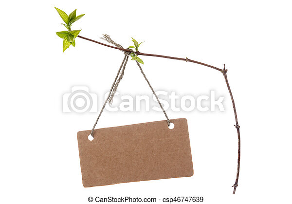 Spring branch with blank tag - csp46747639