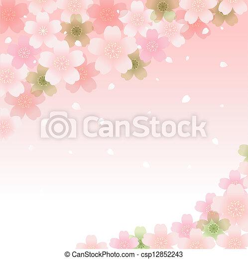 Spring Cherry blossom background - csp12852243
