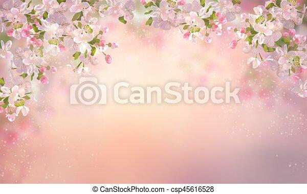 Spring Cherry Blossom - csp45616528
