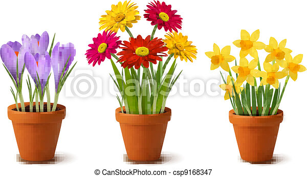 Spring colorful flowers in pots    - csp9168347
