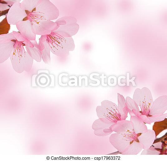 Spring concept - csp17963372