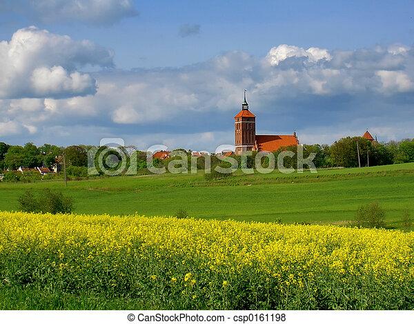 spring fields - csp0161198