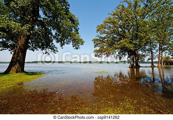 Spring Flooding - csp9141262