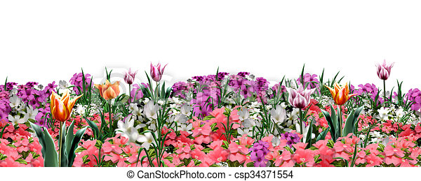 Spring Floral Banner Floral Web Banner Beautiful Spring Flowers