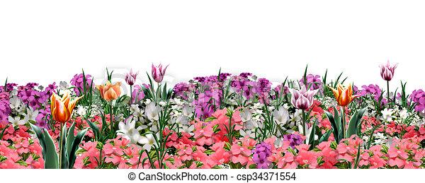 Spring Floral Banner Floral Web Banner Beautiful Spring Flowers