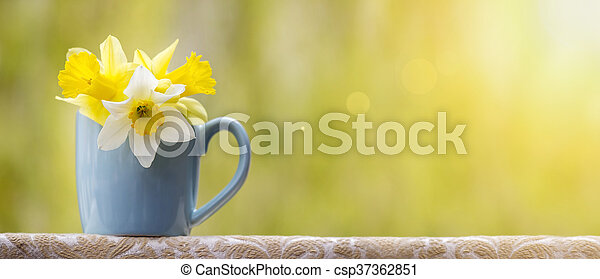 Spring Flower Banner Banner Of Beautiful Yellow And White Easter