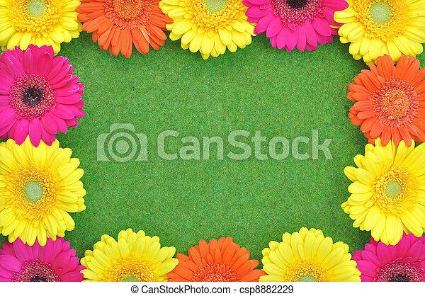 Spring Flower Frame Different Types Of Daisy Forming The Shape Of A