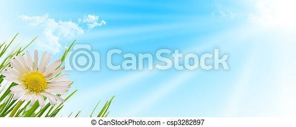 spring flower, grass and sun background - csp3282897