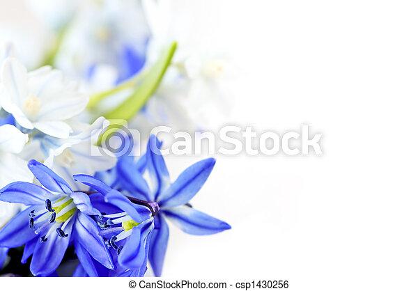 Spring flowers background - csp1430256