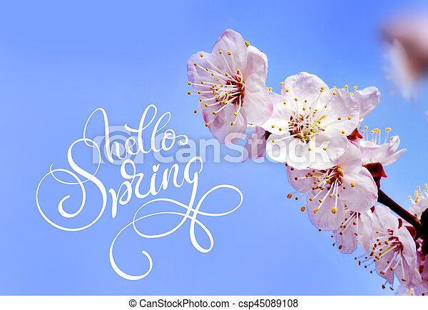 Spring flowers border and text hello spring calligraphy lettering mightylinksfo
