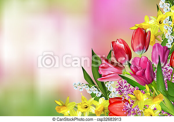 Spring flowers daffodils and tulips stock photography search spring flowers daffodils and tulips csp32683913 mightylinksfo