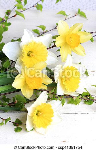 Herbarium Spring Flowers Daffodils Birch Branches White Background