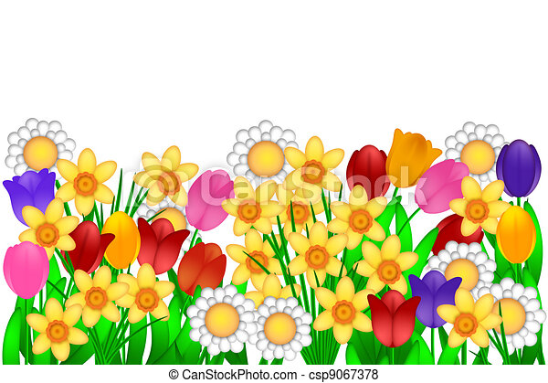 Spring Flowers Illustration Spring Flowers With Tulips Daffodils