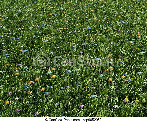 spring flowers in a meadow - csp9052982