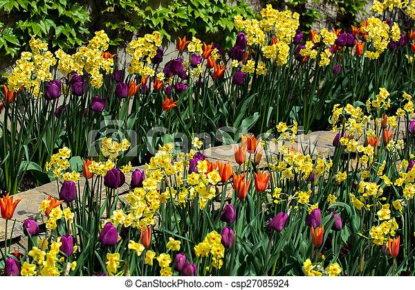 Spring Flowers In Park - csp27085924