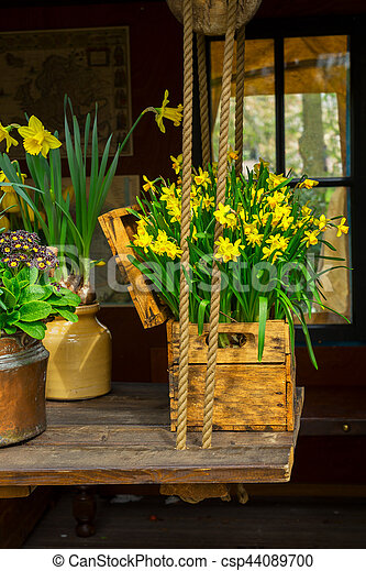 Spring Flowers Scenery Spring Scenery Growing Daffodils Flowers