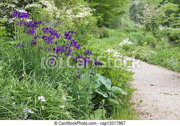 Spring Flowers - csp13317867