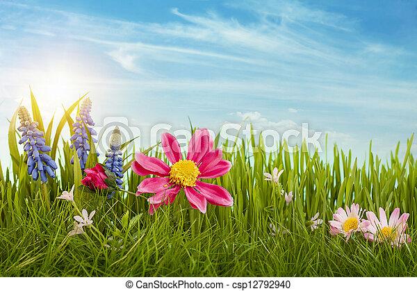 Spring flowers - csp12792940