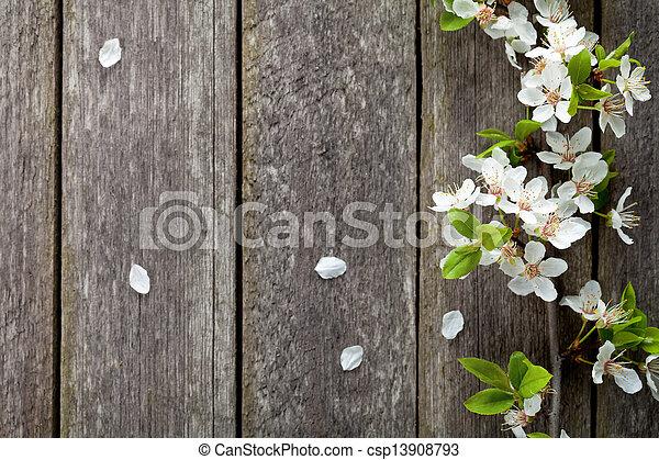 Spring Flowers - csp13908793