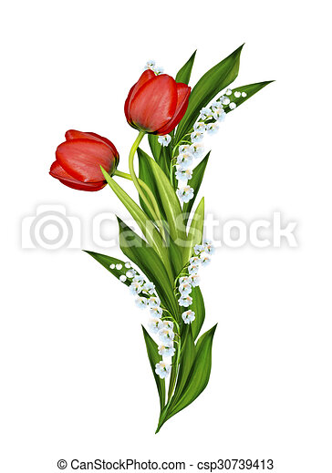 Spring flowers tulips isolated on white background spring flowers tulips isolated on white background csp30739413 mightylinksfo