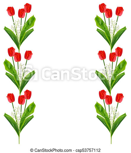 Spring flowers tulips isolated on white background clipart search spring flowers tulips isolated on white background csp53757112 mightylinksfo