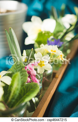 Spring flowers tulips primulas daffodils spring flowers stock spring flowers tulips primulas daffodils csp46447215 mightylinksfo Image collections