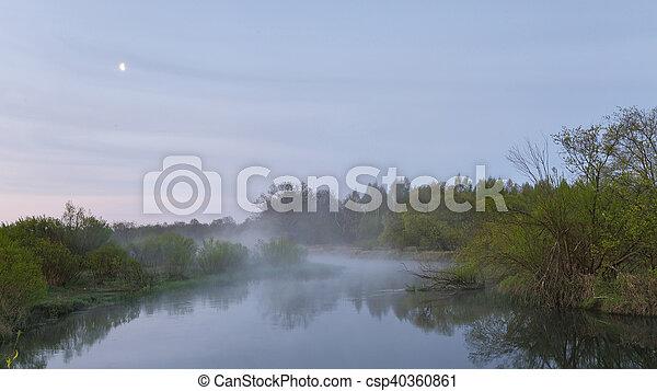 Spring foggy morning - csp40360861