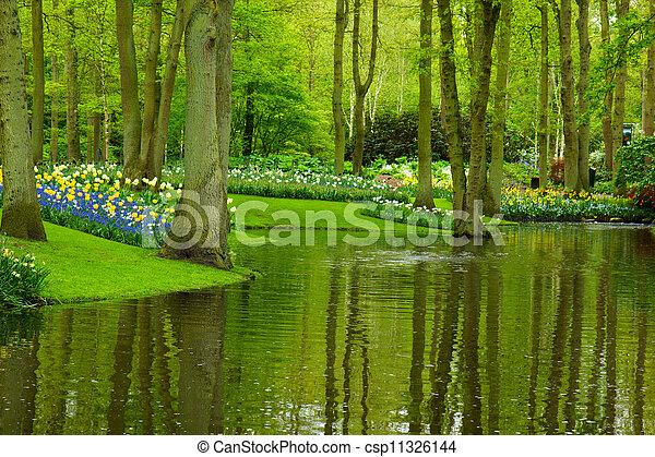 spring garden Keukenhof - csp11326144