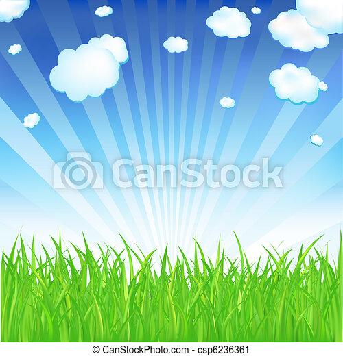 Spring Grass - csp6236361