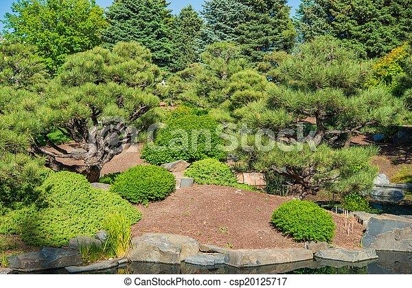 Spring Green Garden - csp20125717