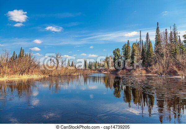 Spring in Siberia - csp14739205