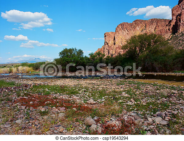 Spring In The Desert - csp19543294
