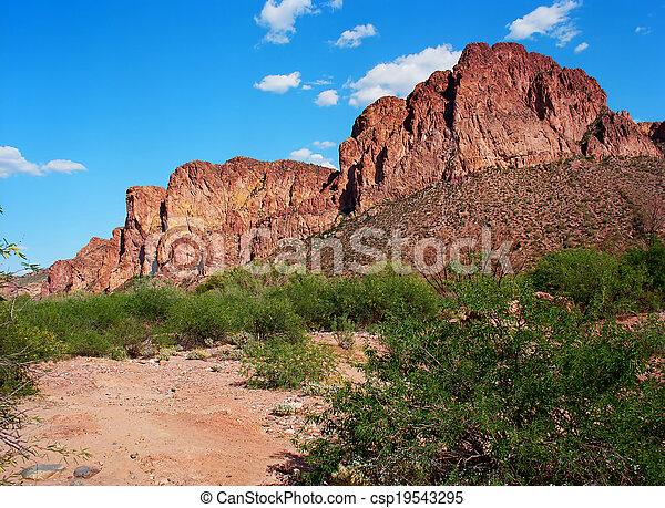 Spring In The Desert - csp19543295