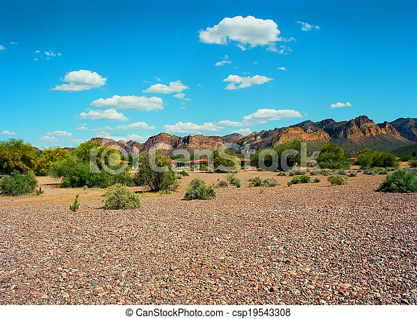 Spring In The Desert - csp19543308