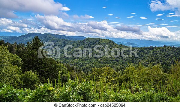 Spring In The Great Smoky Mountains - csp24525064