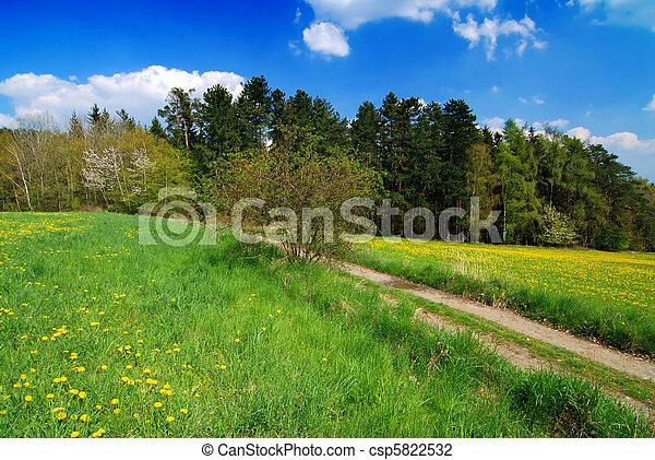 Spring landscape - csp5822532