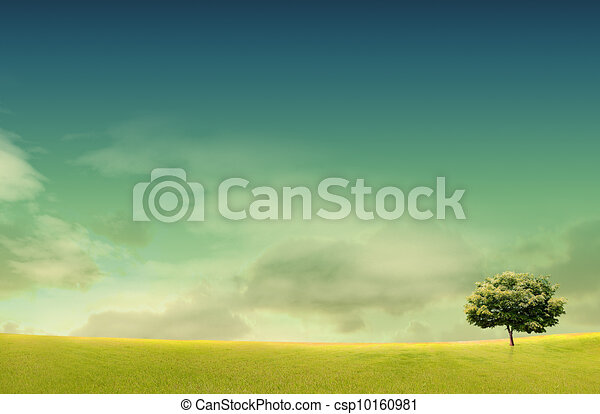 Spring landscape with forrest, tree,green grass and field background - csp10160981