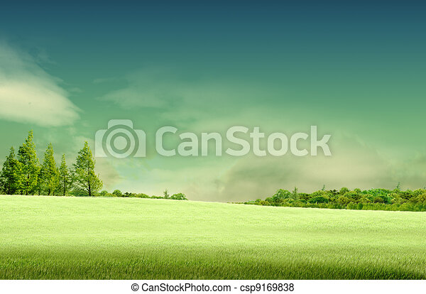 Spring landscape with forrest, tree,green grass and field background - csp9169838