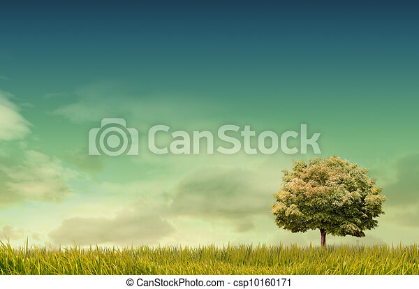 Spring landscape with forrest, tree,green grass and field background - csp10160171