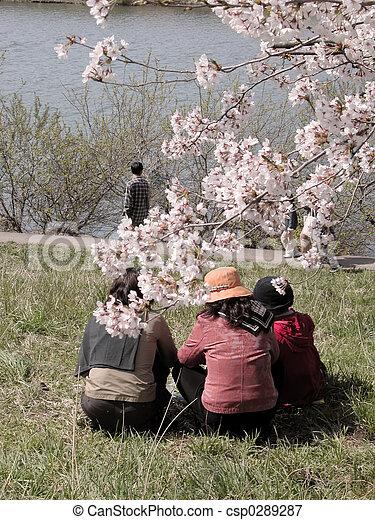 Spring leisure - csp0289287