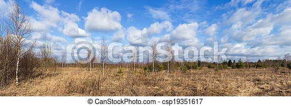 spring panorama - csp19351617