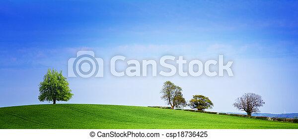 Spring panorama - csp18736425