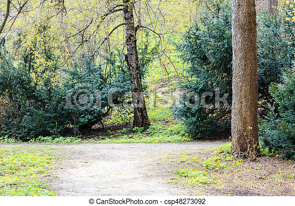 Spring park landscape - csp48273092