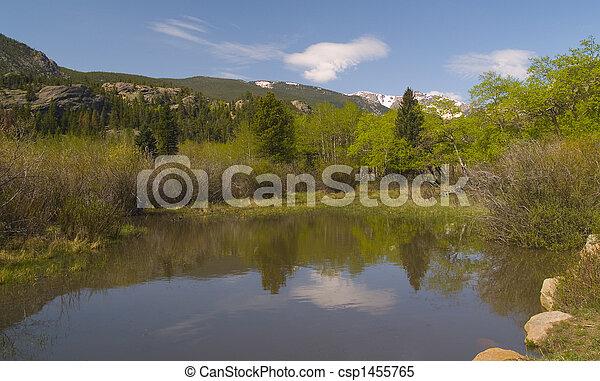 Spring Pond in the Rockies - csp1455765