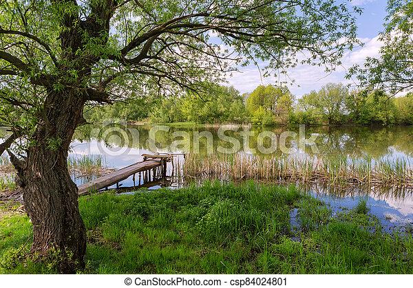 Spring River - csp84024801